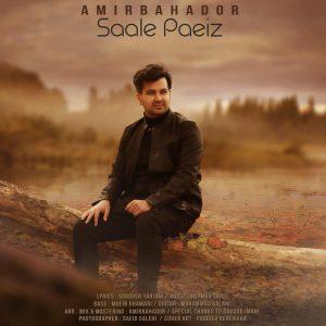 Amir - دانلود آهنگ جدید امیر بهادر به نام سال پاییز