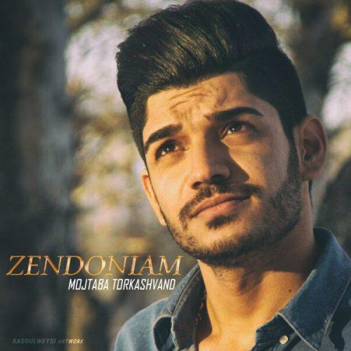 Mojtaba Torkashvand Zendoniam 500x500 1 - دانلود آهنگ مجتبی ترکاشوند به نام دیوار