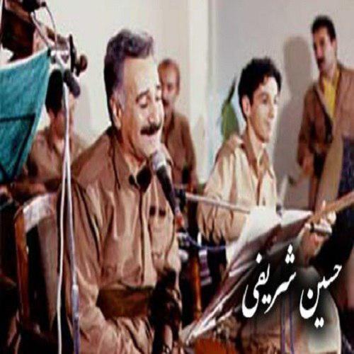 Hossein - دانلود آهنگ حسین شریفی به نام آشفته حالم له غمت